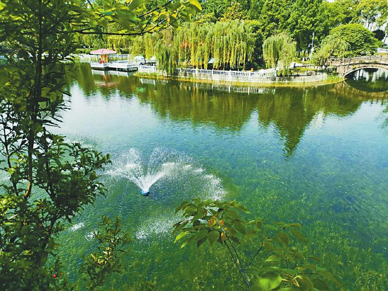 绵阳市人民公园内的人工湖