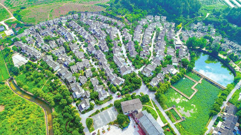 仁寿县大化镇水利社区打造美丽生态庭院